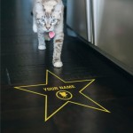 floor-walk-of-fame-golden