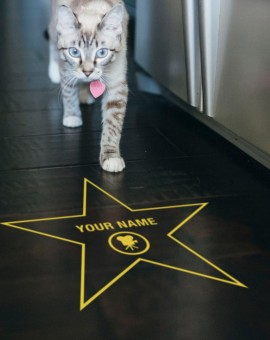 floor-walk-of-fame-golden